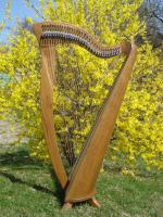 Harfe 34 Saiten Roundback Cam Klappen mit Tasche ind Multistimmschlüssel