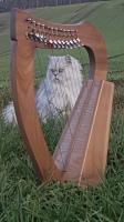 Harfe 12 Saiten Walnuss unverziert Halbtonklappen + Tasche