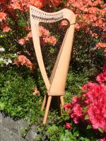 Harfe 19 Saiten Buche Roundback, + Bodenplatte + Füße +Zubehör