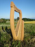 Harfe 12 Saiten Buche glatt + Zubehör