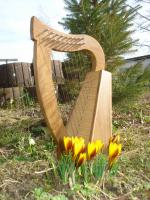 Pentatonische Harfe 9 Saiten Bronze + Zubehör
