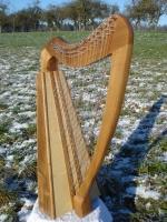 Harfe 22/16 Saiten kreuzsaitig Walnuss mit Tasche